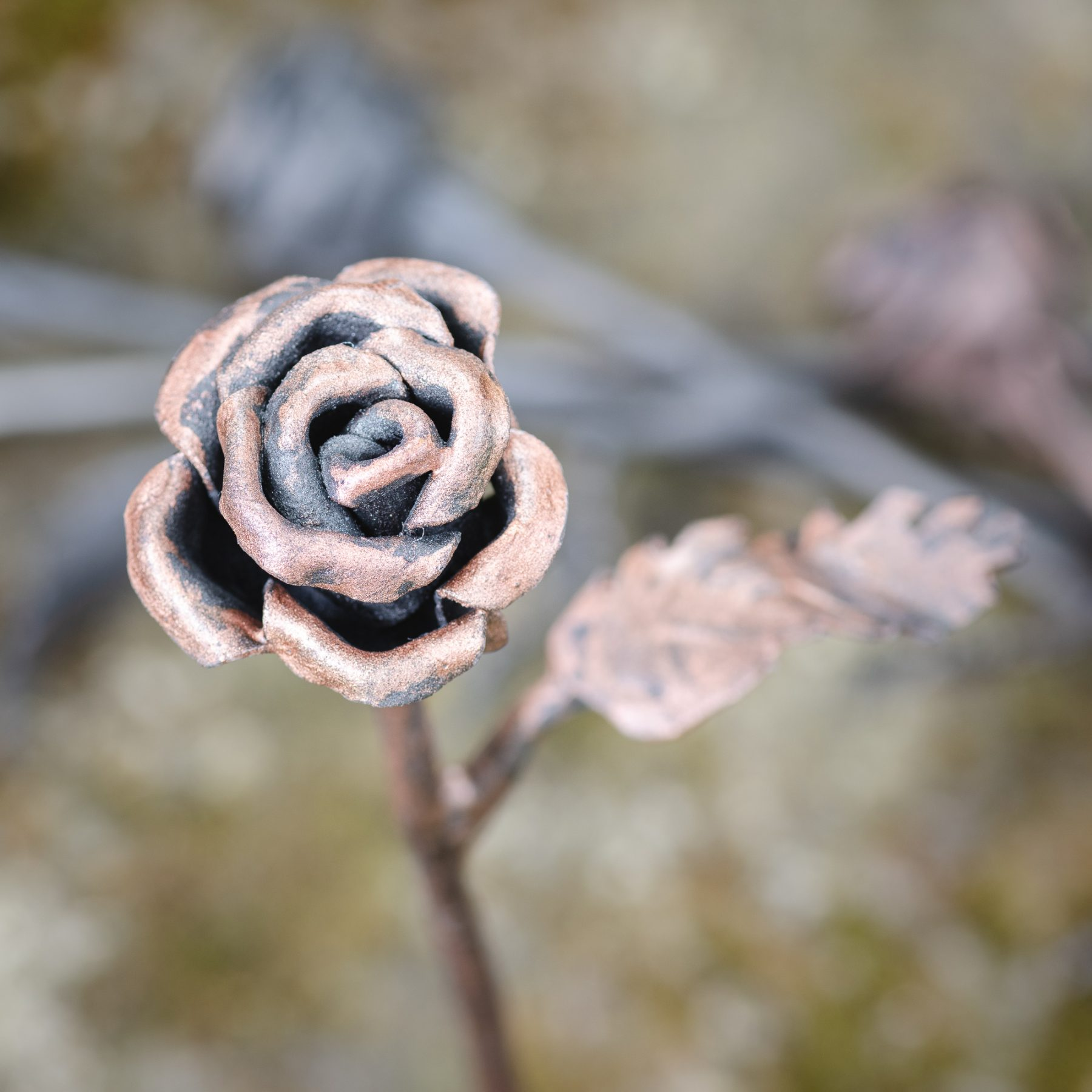 Brass Rose